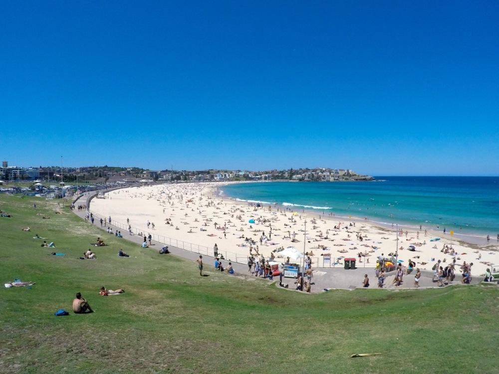 Weihnachten in Australien – Erste Eindrücke aus Sydney und Newcastle (4/5)