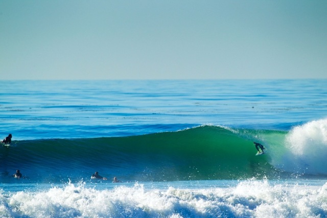 San Diego Surf Cardiff
